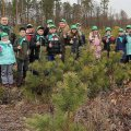 """В Зарічанському лісгоспі триває акція """"Майбутнє лісу в твоїх руках"""""""