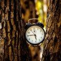 Когда перевод часов на летнее время в Украине