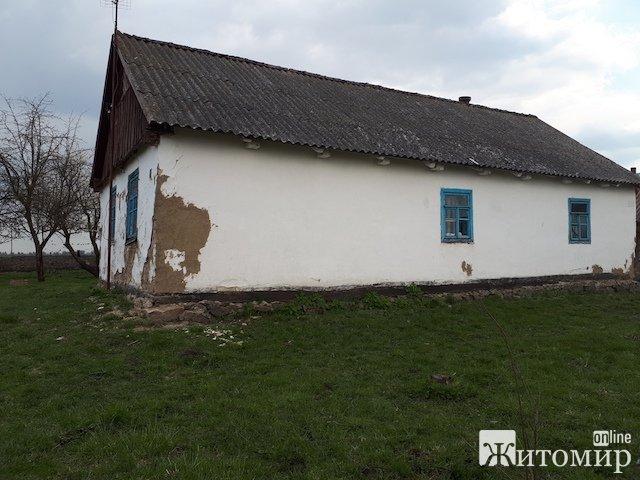 В Чудновском районе 32-летний мужчина, изнасиловав козу, пытался затем изнасиловать свою 3-летнюю пл ...