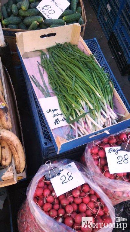 На Житньому ринку кілограм зеленої цибулі обійдеться в 160 гривень