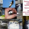 """В Житомирской области приюту для птиц и мелких животных """"Лунная Долина"""" нужна ваша помощь"""