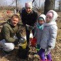 В Новозаводському лісництві висадили молодий ліс