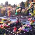 Житомирян закликають відмовитися від штучних квітів на клодовищах