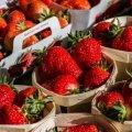 Какими будут цены на ранние овощи и фрукты