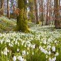 Погода в Житомирі 10 квітня