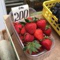 На Житньому ринку у Житомирі вже продають перші цьогорічні полуниці.ФОТО