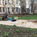 Де у Житомирі найкраще спати весняним ранком? ФОТО