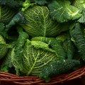 Любимый овощ украинцев резко подорожал