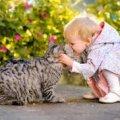 Про користь домашніх тварин  для здоров'я людини