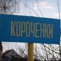 В Чудновском районе 32-летний мужчина, изнасиловав козу, пытался затем изнасиловать свою 3-летнюю племянницу. ФОТО