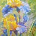 """У Житомирі відбудеться майстер-клас з пастельного живопису """"Весняний настрій"""""""