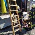Під час пожежі в Житомирі врятовано дві людини.ФОТО