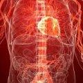 Как улучшить циркуляцию крови