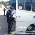 На Житомирщині проходить тиждень безпеки дорожнього руху