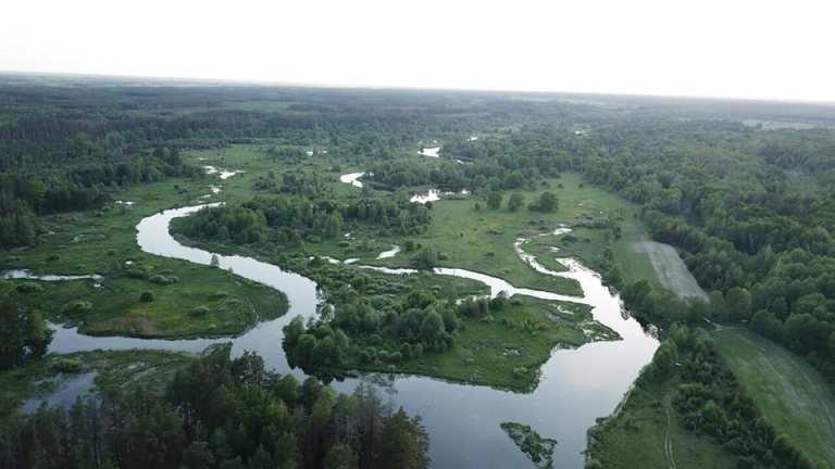 Річка Ірша з висоти пташиного польоту. ФОТО