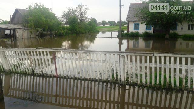 На Житомирщині панує негода - затопило села. ФОТО