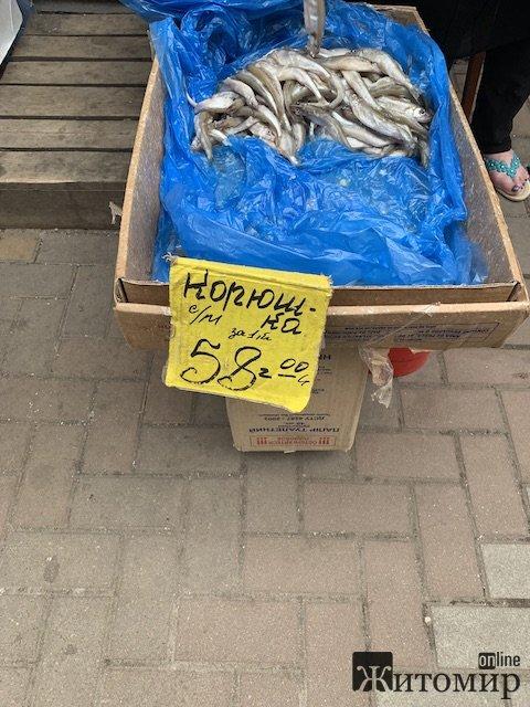 """У Житомирі продають загадкову """"корюшку"""". ФОТО"""