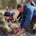 Наймолодші учні шкільного лісництва висалили плантацію новорічних ялинок в Бердичівському лісгоспі
