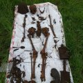 Под Бердичевом найдены останки солдат, погибших во время второй мировой войны. ФОТО