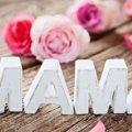 До Дня матері у Житомирі встановлять танцювальний рекорд