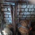 У Новоград-Волинському районі виявлені грубі порушення правил рибальства