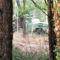 В Курном заметили, что у них гектарами вырубают лес, лишь после обращения редакции еженедельника «Субота» в полицию, прокуратуру и экологическую инспекцию
