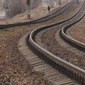 На Житомирщині потяг смертельно травмував 55-річну жінку