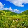 Сьогодні вдень 24 травня у Житомирі та області хмарна погода з проясненнями