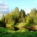 Недільна погода в Житомирі
