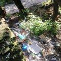 Купи сміття та повалені дерева: Житомиряни шоковані станом Замкової гори. ФОТО