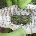 У Коростені затримано юнака, який намагався доправити у виправну колонію наркотики