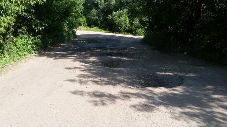 Жителі Корнина скаржаться про наболіле: розбиту дорогу, яку ледь видно в кущах. ФОТО