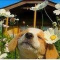 Якою ж буде погода в Житомирі 4 червня?