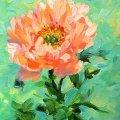 """У Житомирі відбудеться майстер-клас з олійного живопису """"Квітка"""""""