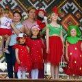 Фестиваль полуниці у Високій Печі – нова яскрава візитівка Житомирського району!
