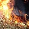 В Житомирській області через розряд блискавки заледве не згорів сіновал