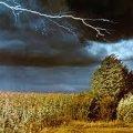 Вже з завтрашнього дня в Житомирській області очікується різке погіршення погодних умов