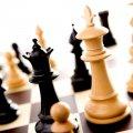 Шахові вихідні на Житомирщині. Анонс заходів