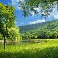 Прогноз погоди в Житомирі на 1липня