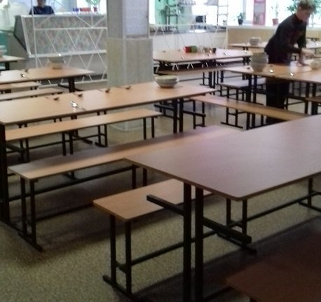 Кишкова паличка на посуді та нітрати в овочах: Лабораторний центр перевірив школи Житомирщини