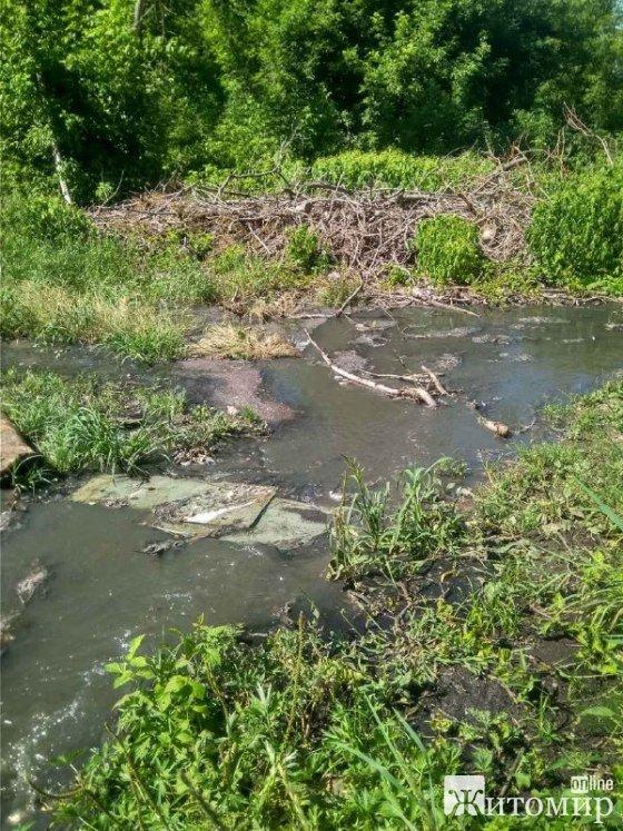 В Озерному більше двох місяців каналізаційні стоки потрапляють у річку. ФОТО