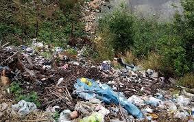 Кар'єр у зоні відпочинку на Житомирщині утопає у Львівському смітті