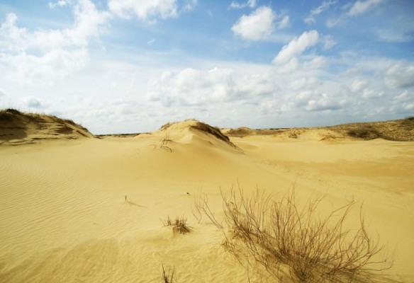 Природне диво Херсонщини – українська пустеля