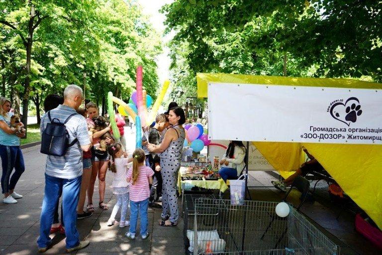 """ГО """"Зоо-Дозор"""" в Житомирі на вихідних провели благодійну акцію на підтримку безпритульних тварин. ФОТО"""