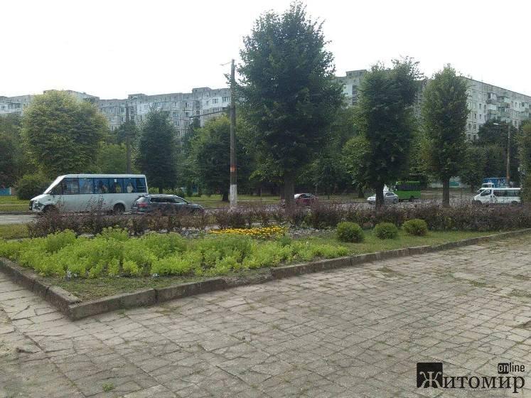 Прогулянка вулицею Вітрука у Житомирі. ФОТО