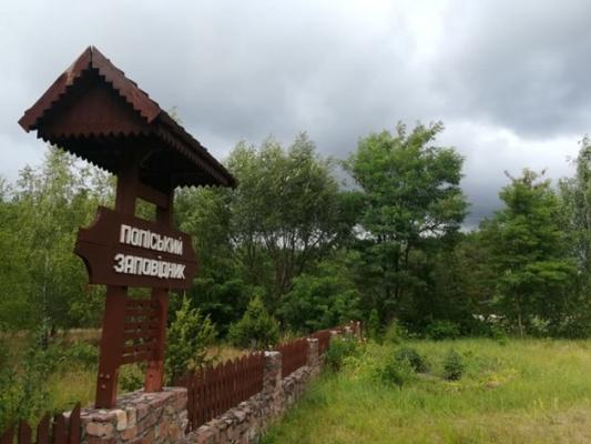 Українська тайга на житомирському Поліссі