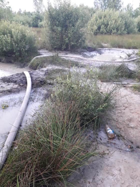 На Житомирщині прикордонники не допустили спробу незаконного  видобутку бурштину. ФОТО