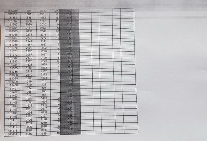На двох дільницях у Житомирському окрузі №62 за 4 години проголосували майже всі виборці