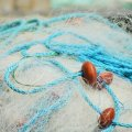 У червні по області викрито 97 порушень правил рибальства