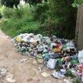 Житомиряни просять встановити контейнери для сміття біля міських кар'єрів